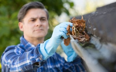 3 Tips On How To Clean Gutters Safely And Efficiently